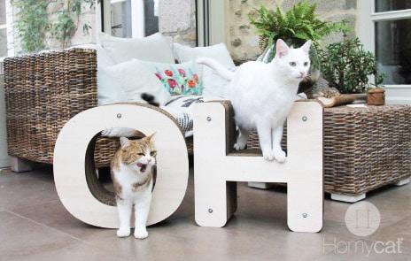 des griffoirs qui font du bien absolument chats. Black Bedroom Furniture Sets. Home Design Ideas