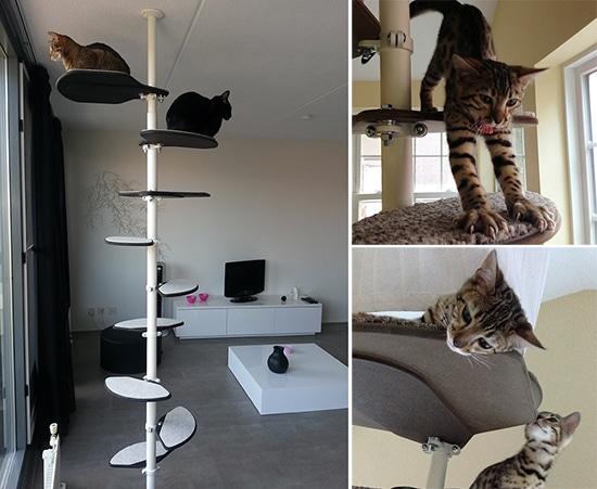 Des arbres à chats pas comme les autres - Absolument Chats adc195323bb0