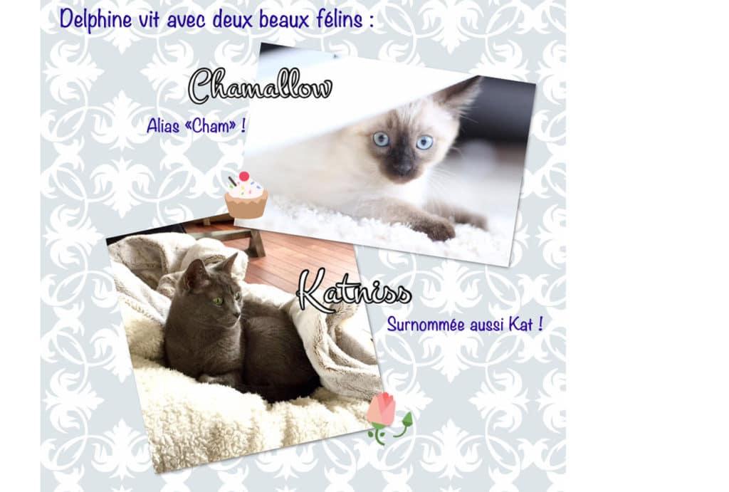 quel surnom a votre chat - Absolument Chats 9