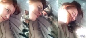Comment bien accueillir son chaton ? Parole d'une habituée !