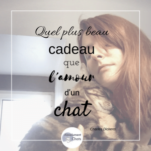 citation-chat-absolument-chats5