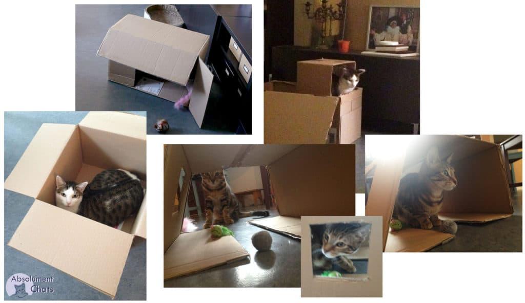 fabriquer arbre a chat carton fabriquer une cabane en. Black Bedroom Furniture Sets. Home Design Ideas