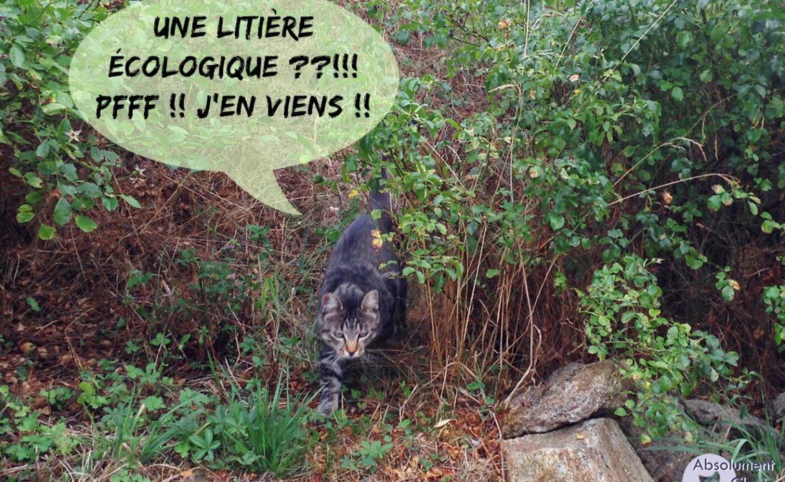 """Résultat de recherche d'images pour """"Pipi de chat ecologique"""""""