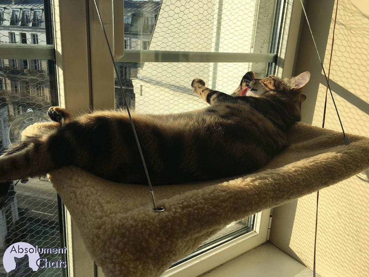 Chat hamac de fenêtre MadeForCats- AbsolumentChats2